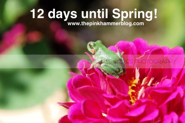 How many days until spring the pink hammer blog